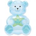 It's a boy bear