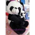 Panda sa pandicom