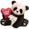 Love You Panda Bear - folija balon