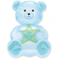 It's a boy bear